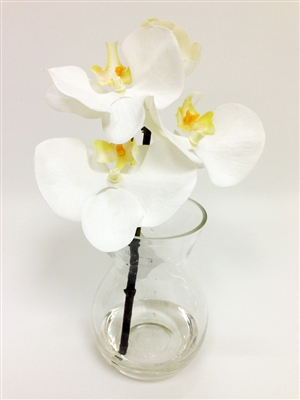 Phalaenopsis Orchids Real Touch Artificial Flower